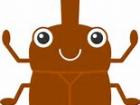 カブトムシの赤ちゃん